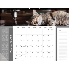 Furry Cats Desk Pad